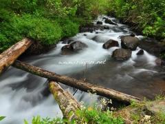 aliran-sungai-gunung-tujuh
