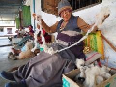 tibetan-karpet-7515