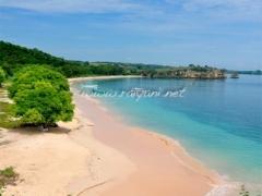 pink-beach-lombok