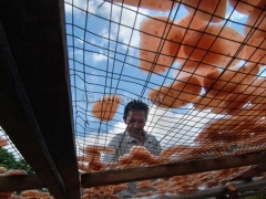 pembuat-krupuk-di-kampung-gedong