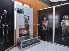 museum-manusia-purba
