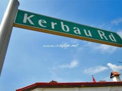 kerbau-road