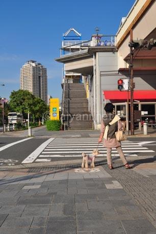 odaiba-mall