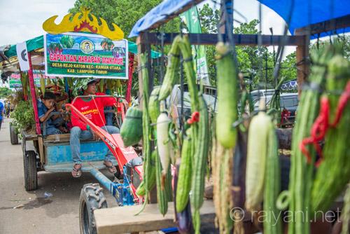 Aneka sayuran hasil pertanian menghiasi karnaval - raiyani 5835