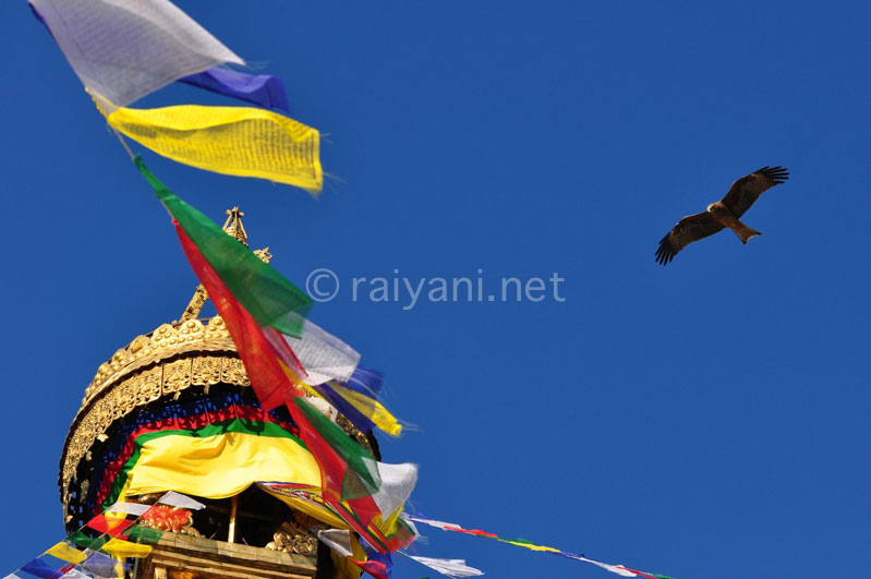 Stupa Boudanath