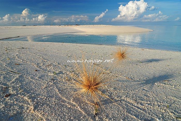 atol takabonerate south sulawesi
