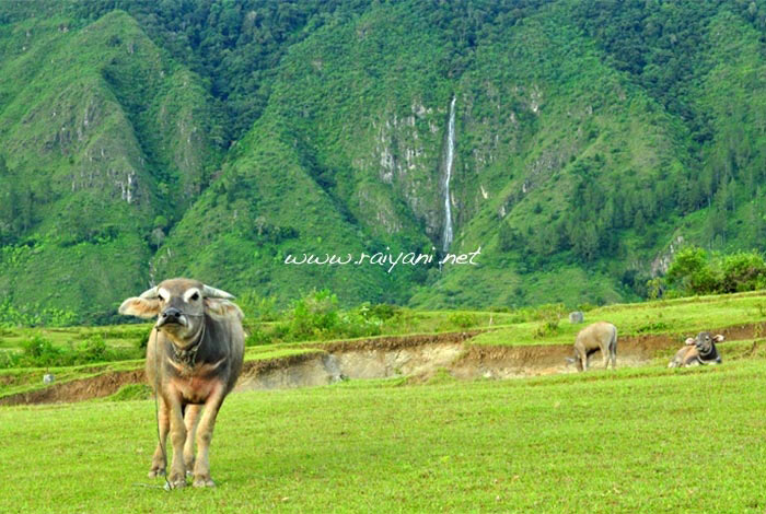 bukit-kite-samosir-north-sumatra