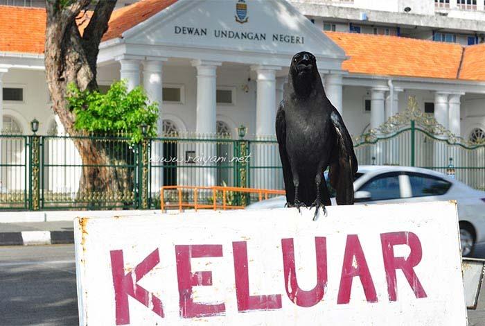 burung gagak dan suasana kota tua