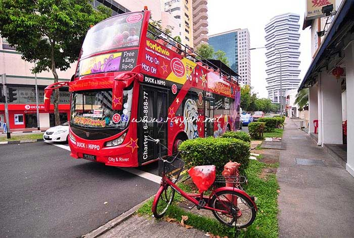 bus city sightseeing
