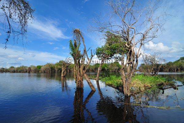 danau sentarum west kalimantan