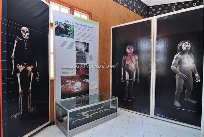 museum manusia purba NTT