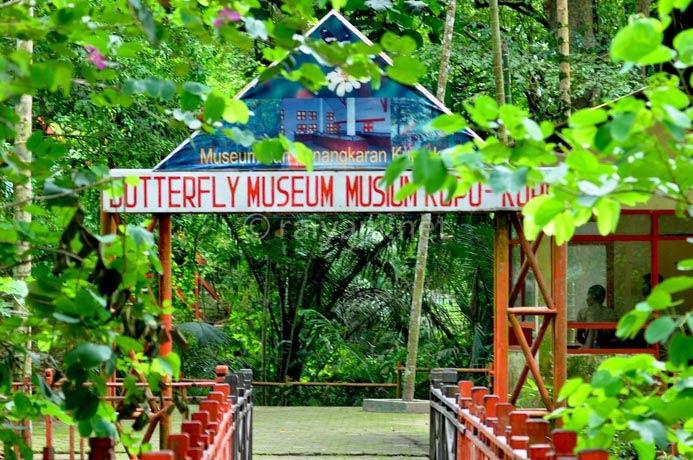museum penangkaran kupu-kupu bantimurung south sulawesi