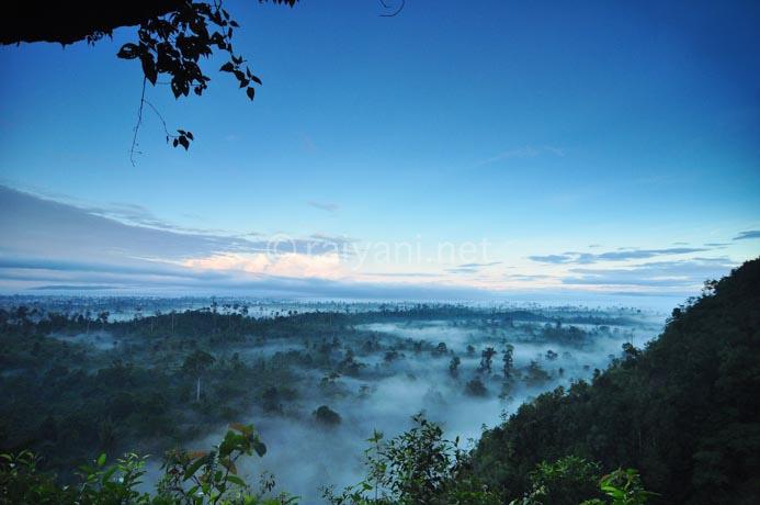 pemandangan penuh kabut dari goa east kalimantan