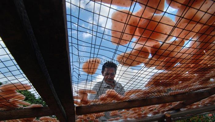 pembuat krupuk di kampung gedong bangka belitung