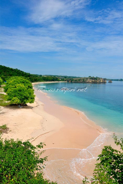 pink beach lombok NTB