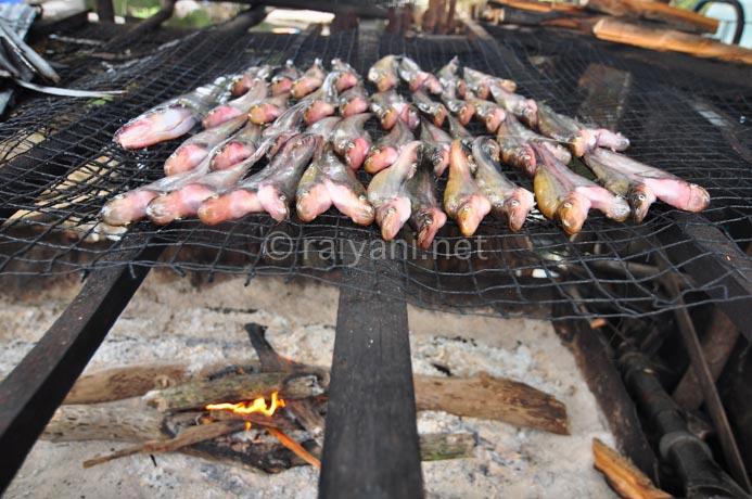 ikan asap danau sentarum - raiyani